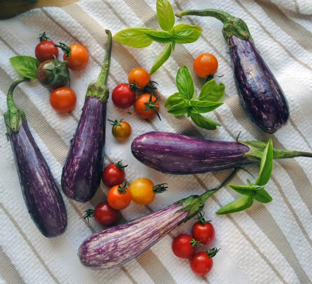 Eggplant Caprese Bites 1